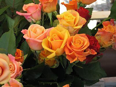 Rosen für Herta Müller